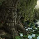 Sedmero umění subsalixkých – Moudrá vrba