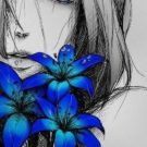 Modrá lilie