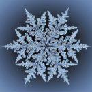Sněhová vločka pro Havraspár